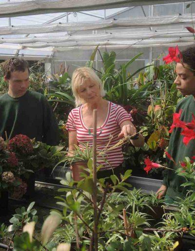 Bereich Gartenbau/Floristik
