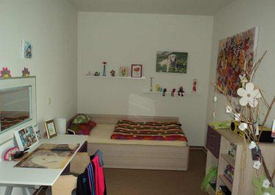 Ein Zimmer mit Hundebildern an der Wand, einem Schreibtisch und einem Bett.